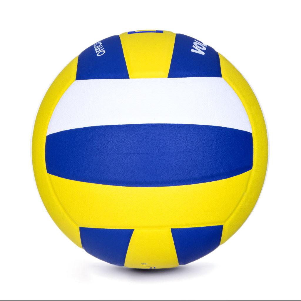 Volleyball DIG II
