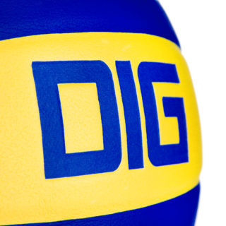 DIG II - Piłka siatkowa
