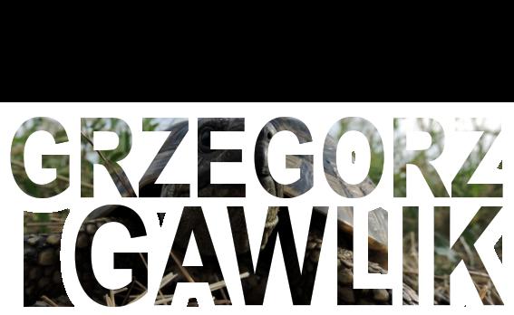 Grzegorz Gawlik