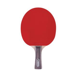 EXERCISE - Tischtennisschläger