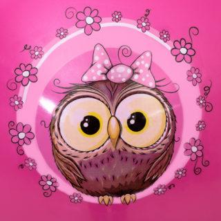 LITTLE OWL 60cm