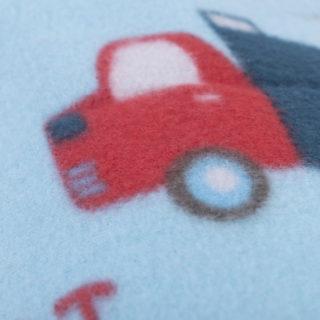PICNIC CARS - Koc piknikowy